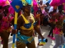 Carnival Road March 2014